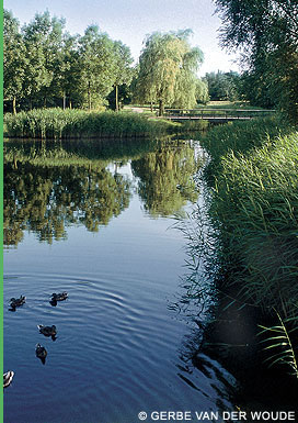 Stichting Wilde PlantenBlaricum/ Gooise heemtuin